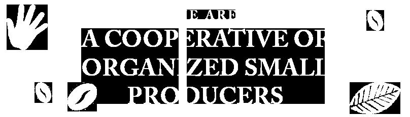 Pequeños productores organizados